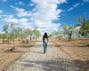 Wüste - Malteser Impuls Mai 2010